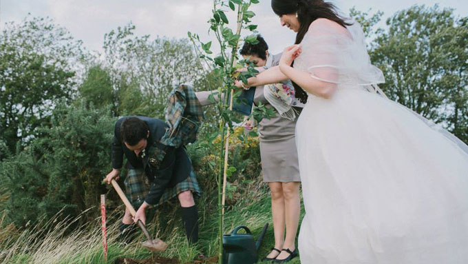 planting tree wedding